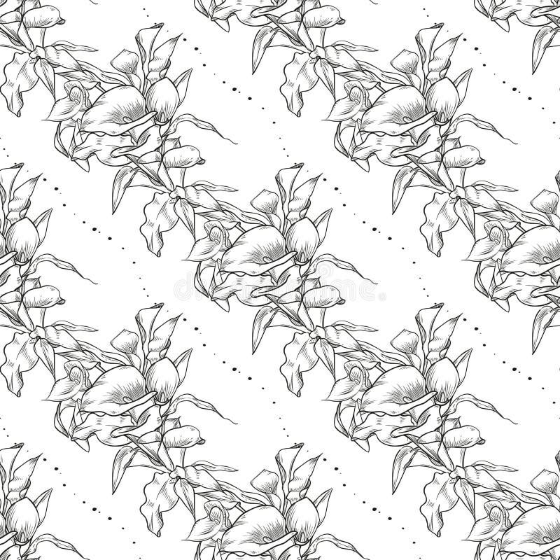 Картина callas вектора безшовная цветков иллюстрация вектора