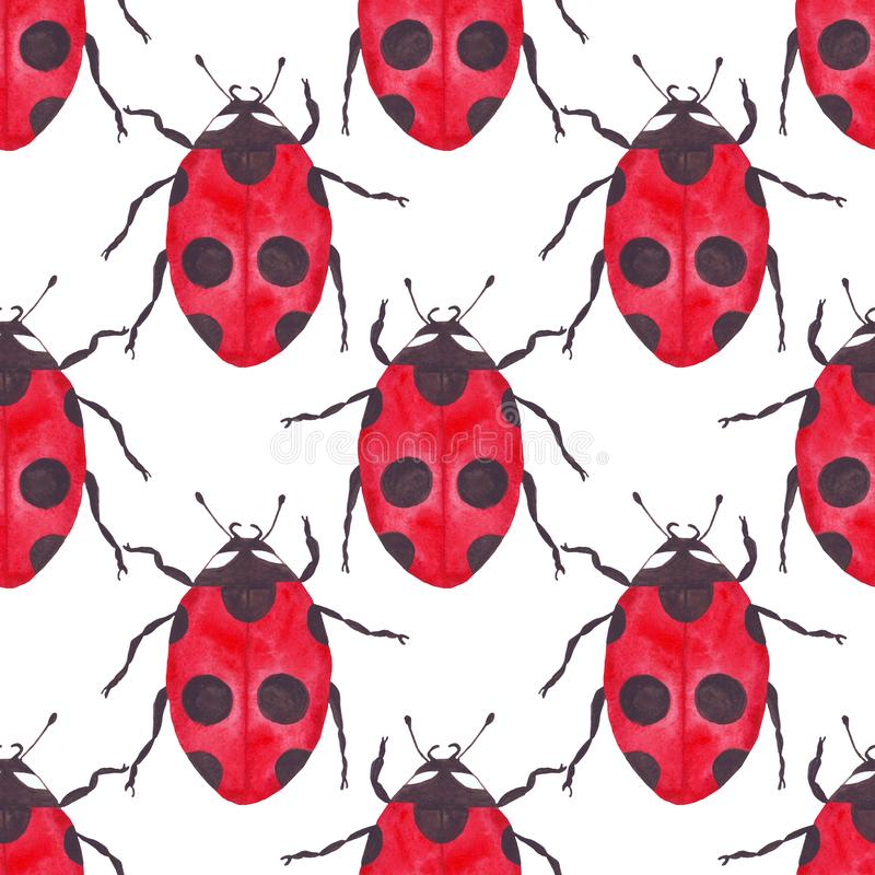 Картина ladybug акварели безшовная на простой белой предпосылки регулярная иллюстрация вектора