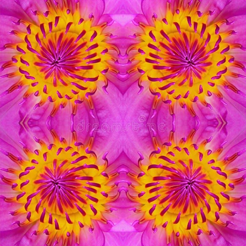 Download Картина Waterlily стоковое изображение. изображение насчитывающей backhoe - 40582169