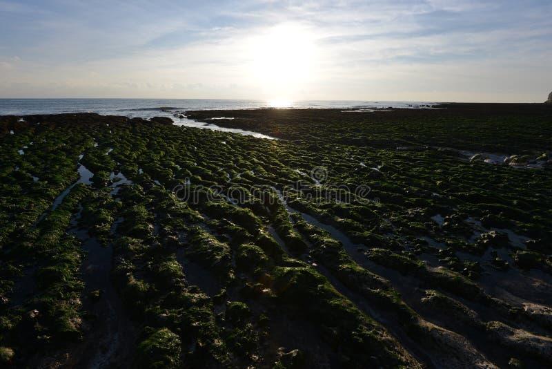 Картины берега стоковое изображение rf