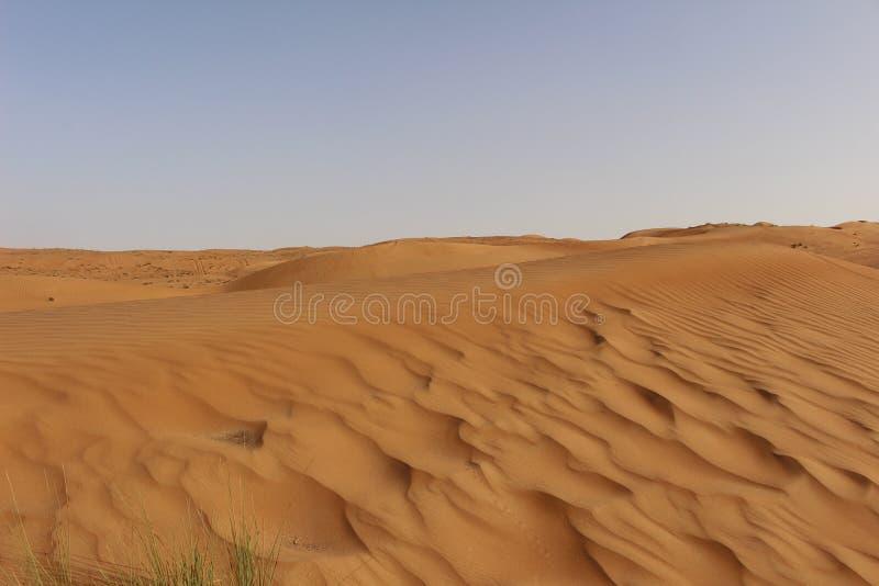 Картины в дюнах пустыни песков Wahiba в Омане стоковое фото rf