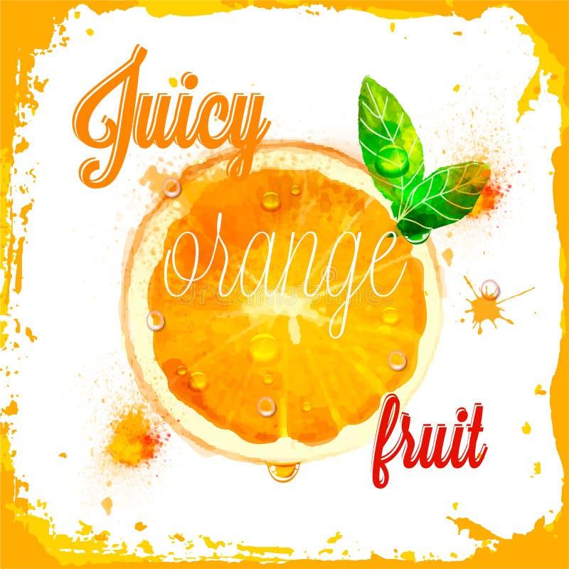 Картины оранжевого вектора сочные отрезанного плодоовощ иллюстрация штока