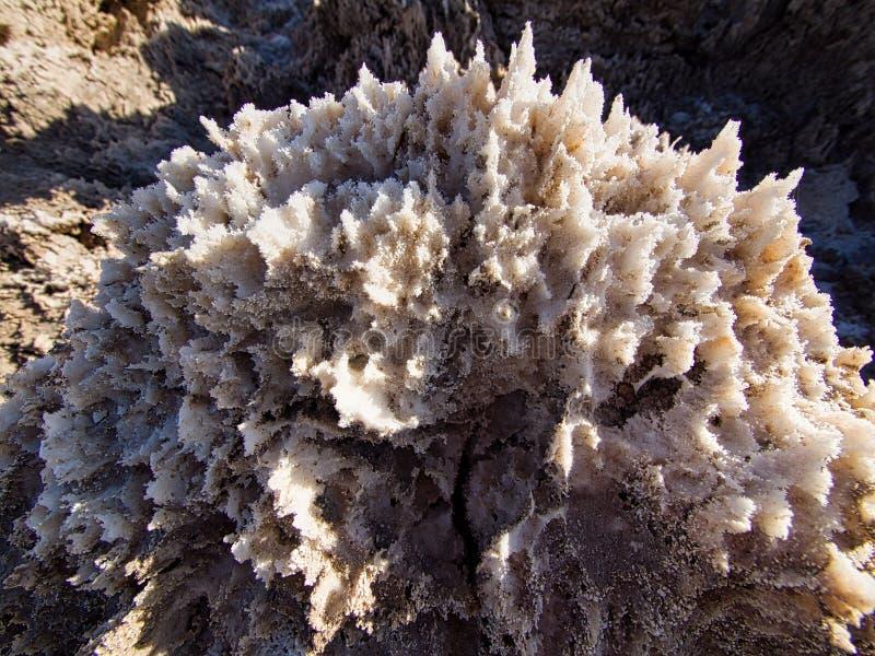 Картины Clode-up изумляя образований кристаллов в поле для гольфа дьявола, Death Valley стоковое изображение rf