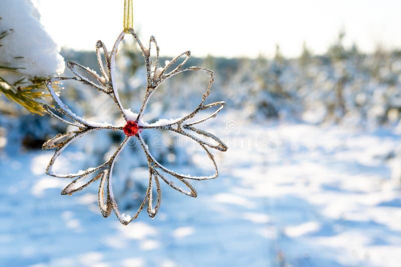 Картон украшения рождества вися на дереве снаружи, предпосылке леса зимы и снеге стоковое фото rf