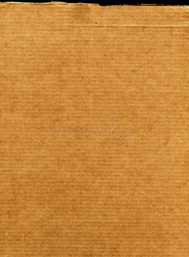 картон хребтообразный стоковые фотографии rf