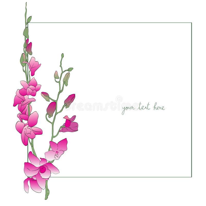 Карточка длинных орхидей минимальная иллюстрация штока