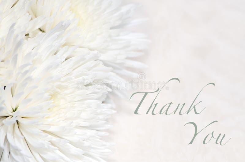 Карточка похорон спасибо стоковая фотография rf