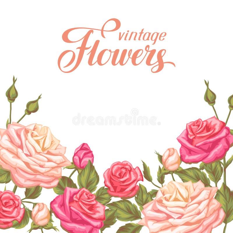 Карточка приглашения с винтажными розами Декоративные ретро цветки Отображайте для wedding приглашений, романтичных карточек, пла иллюстрация вектора