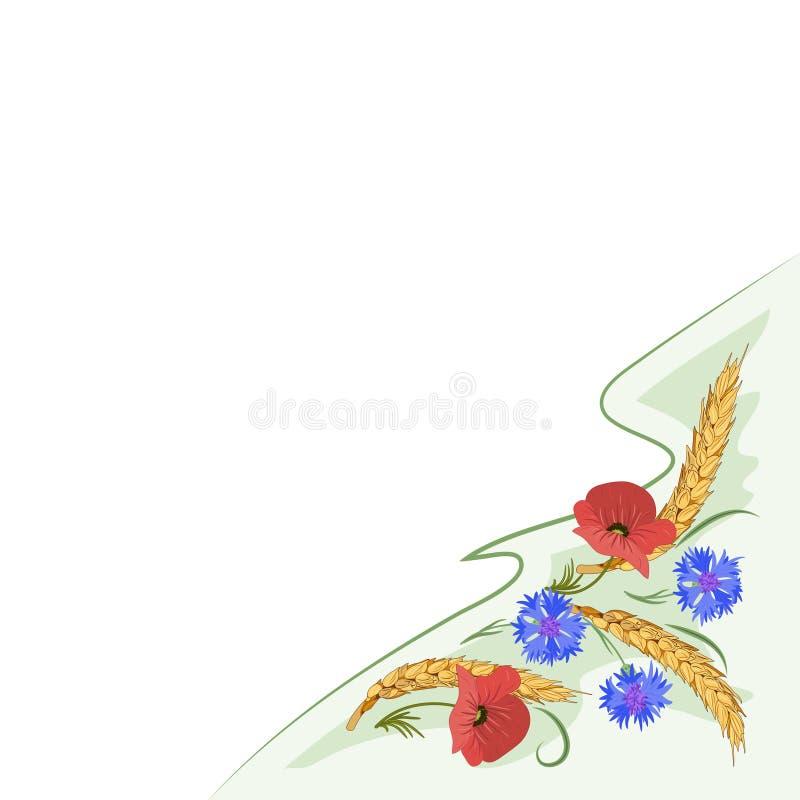 Карточка с ушами, cornflower и маком пшеницы цветет иллюстрация штока