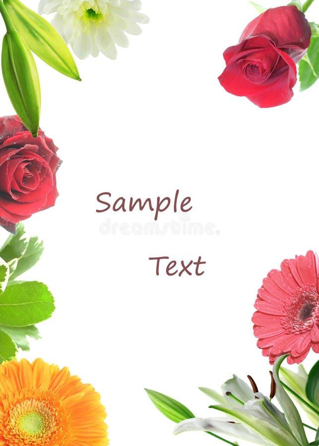 карточка флористическая стоковые фотографии rf