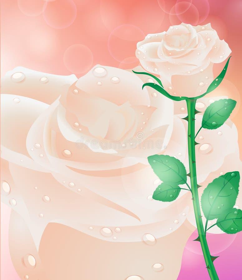 карточка цветет приветствие День матери карточки, день валентинки иллюстрация вектора
