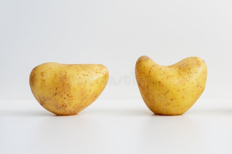 Картошка в форме сердца Романс природы стоковое фото