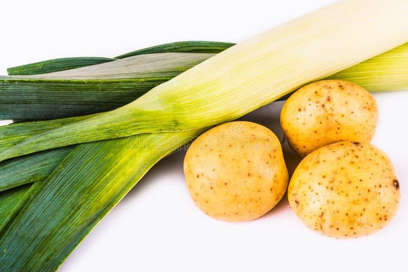 Картошка и лук-порей стоковые фотографии rf