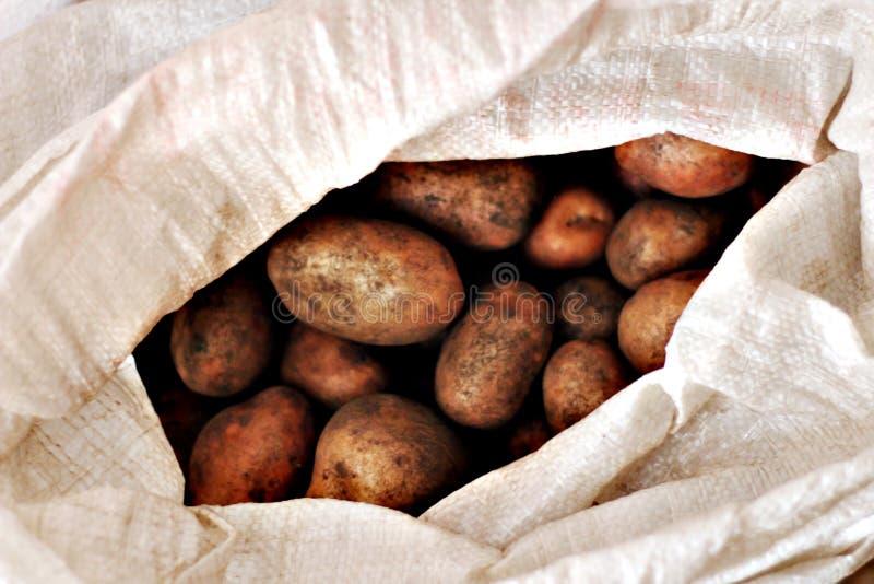 имеется картинки сбор последней картошки лето впереди, останавливайся