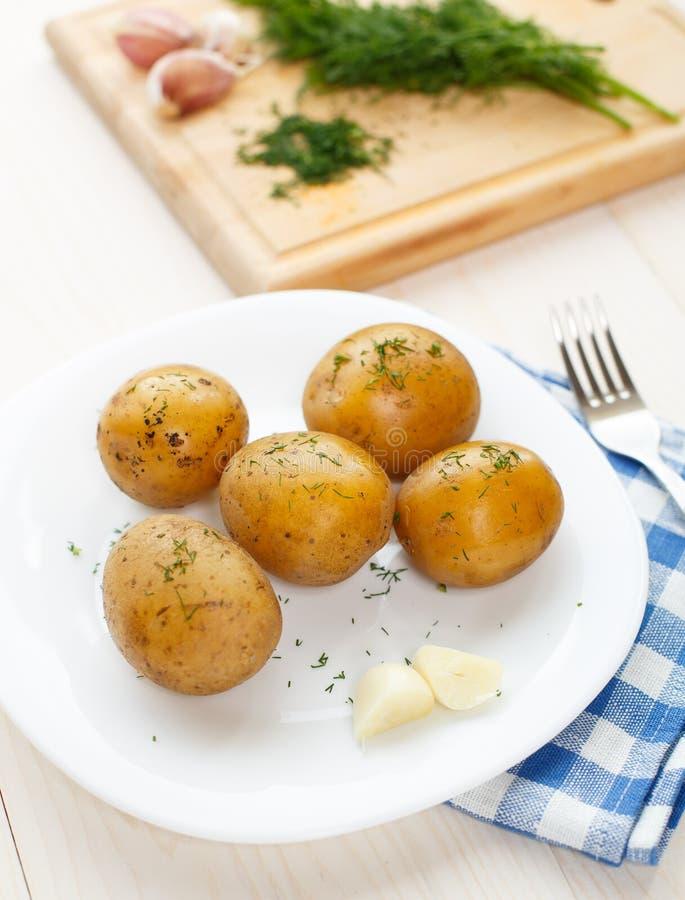 Download Картошки кипеть детенышами с укропом Стоковое Фото - изображение насчитывающей масло, bogota: 33730356