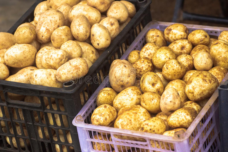 Картошки на корзине стоковое фото