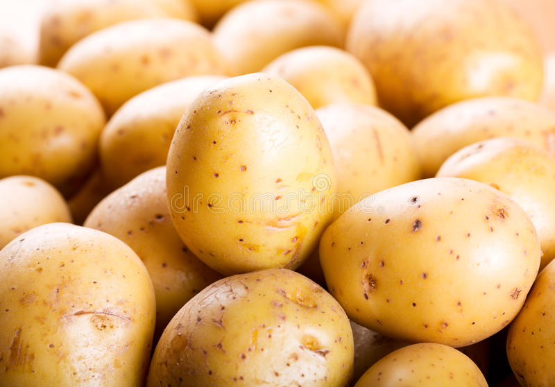 картошки сырцовые стоковые изображения