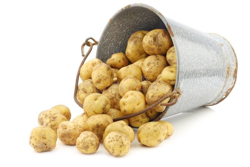картошки эмали пука ведра старые стоковые изображения rf