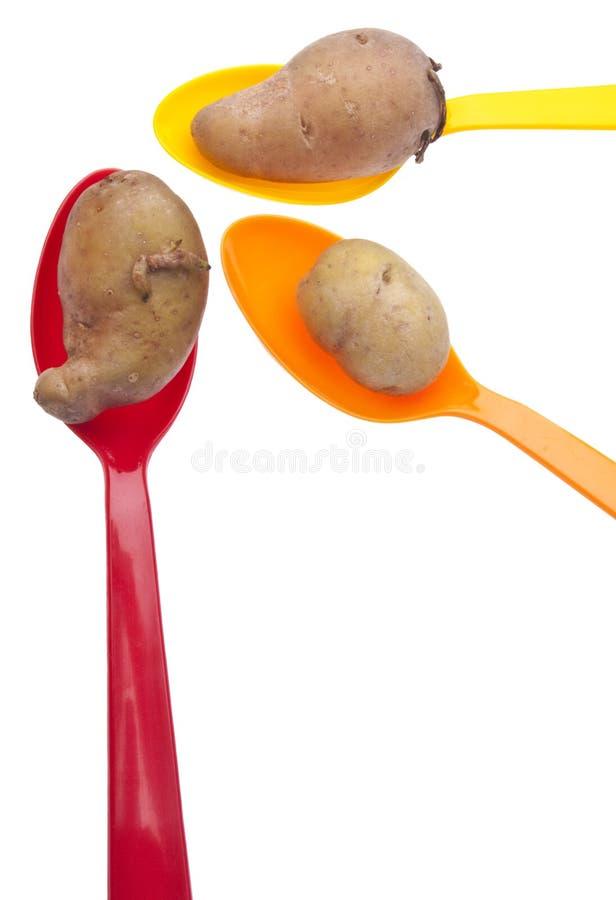 картошки fingerling ремесленника стоковое изображение