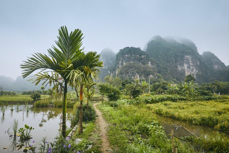 Картский ландшафт Вьетнама стоковое изображение rf