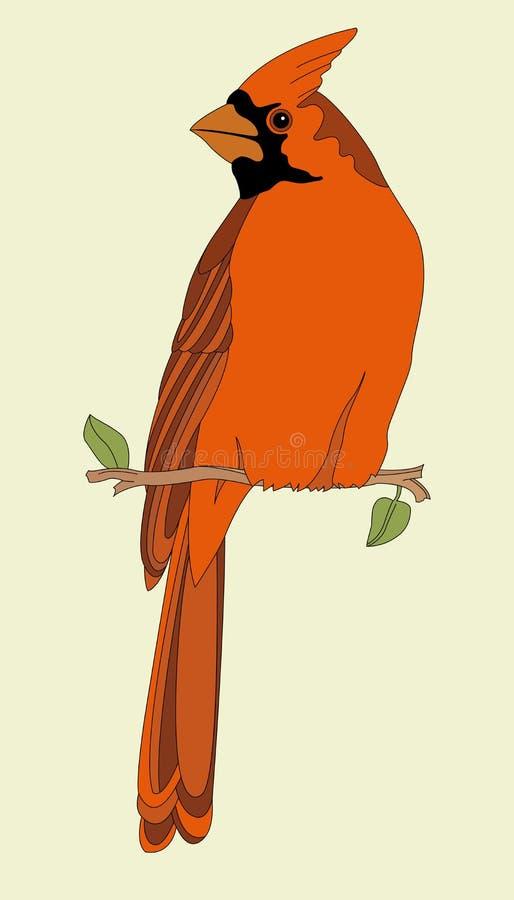 Кардинальная красная птица на предпосылке ветви стоковые изображения rf