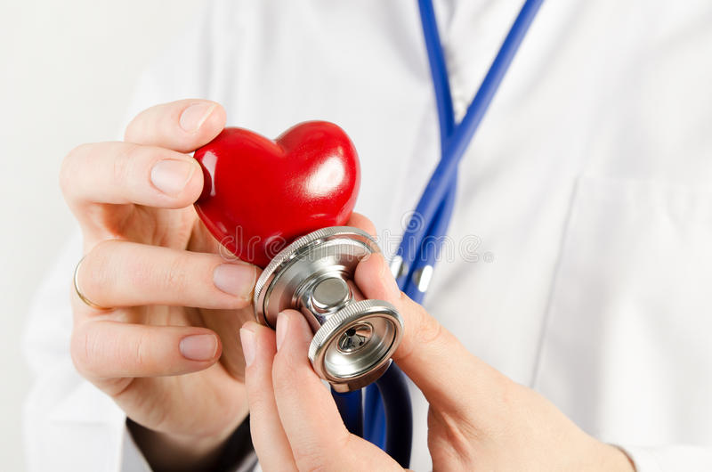 Кардиолог держа модель сердца 3D стоковое изображение