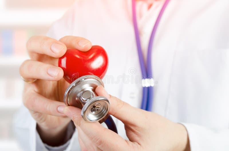 Кардиолог держа модель сердца 3D стоковые изображения rf