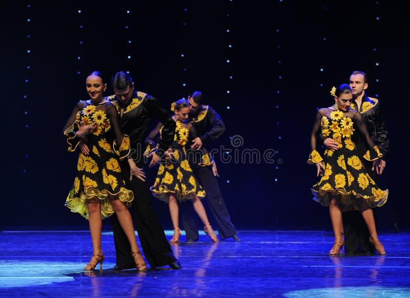 Касание canoodle-staffage- танец мира Австрии стоковая фотография rf