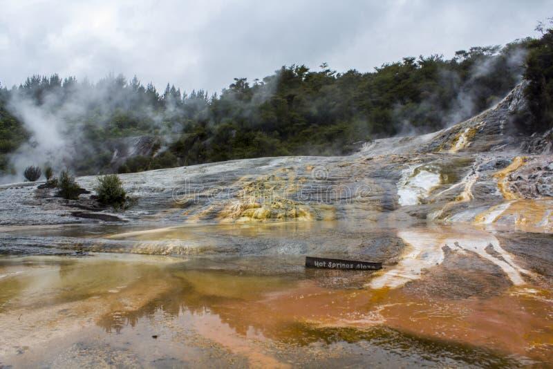 Каскадируйте водоросли террасы и горячих источников на Orakei Korako стоковые фотографии rf