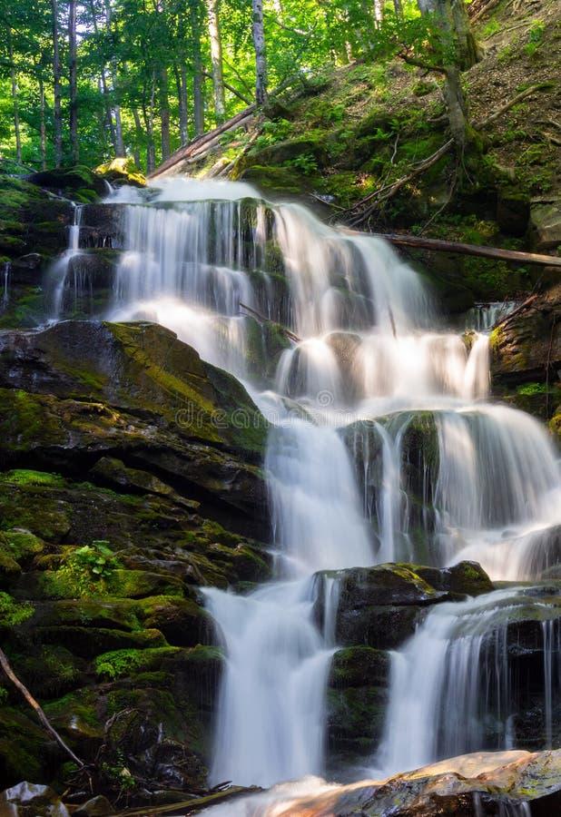 Каскады большого водопада в лесе стоковые изображения rf