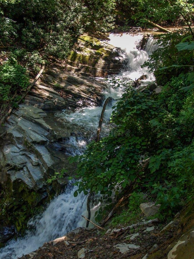 Каскады вдоль реки Catawba в национальном лесе Pisgah стоковое фото