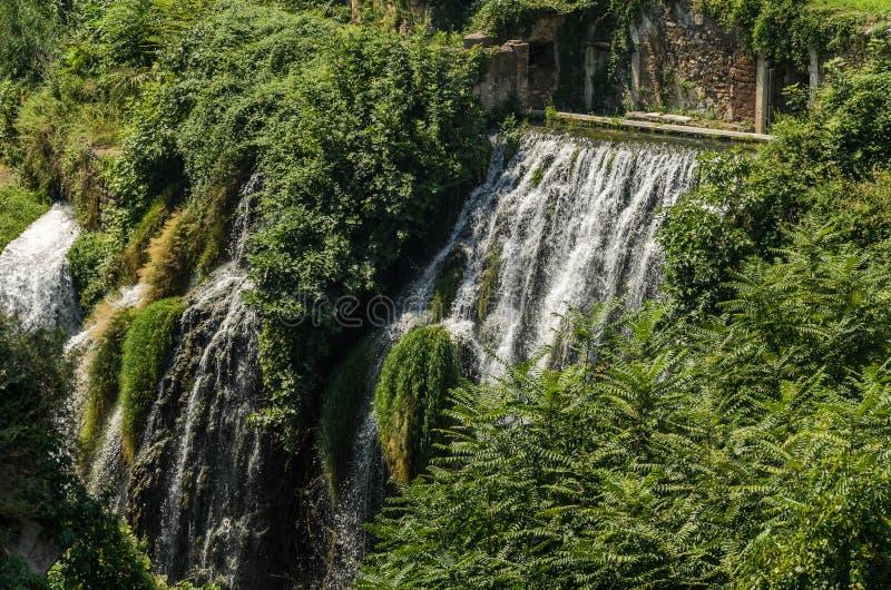 Каскады водопадов среди старых руин в растительности стоковое фото rf