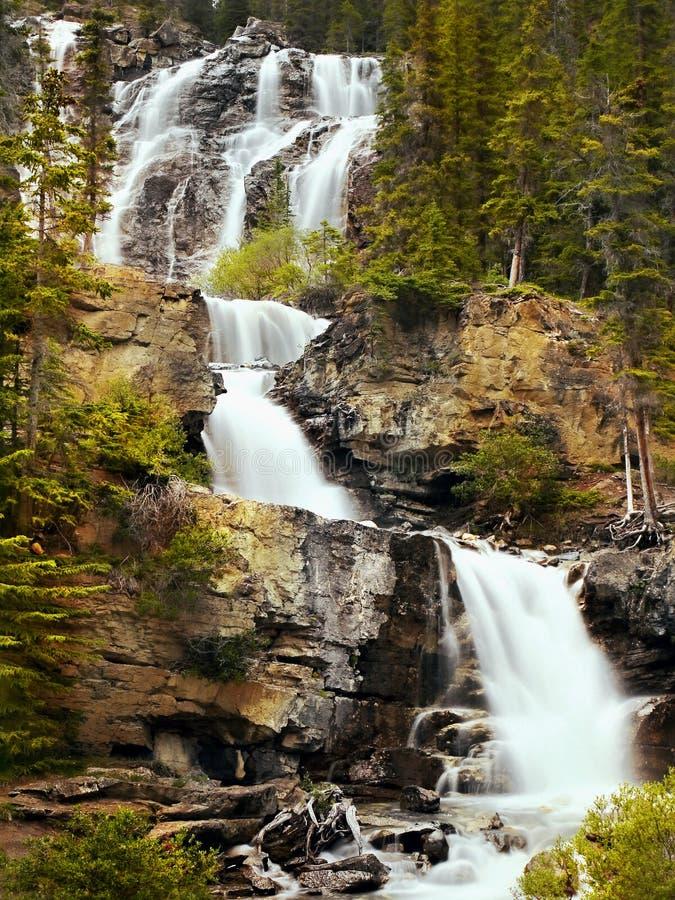 Каскады воды, падения леса, водопады стоковые изображения rf