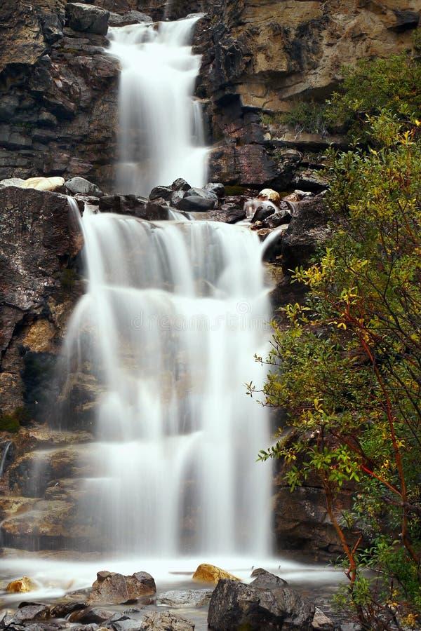 Каскады воды, падения леса, водопады стоковая фотография