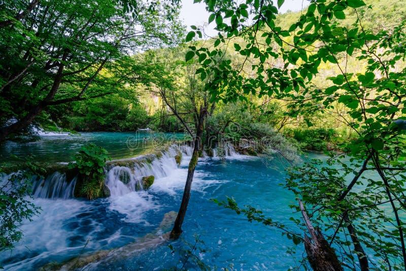 Каскады и водопад красоты стоковое фото