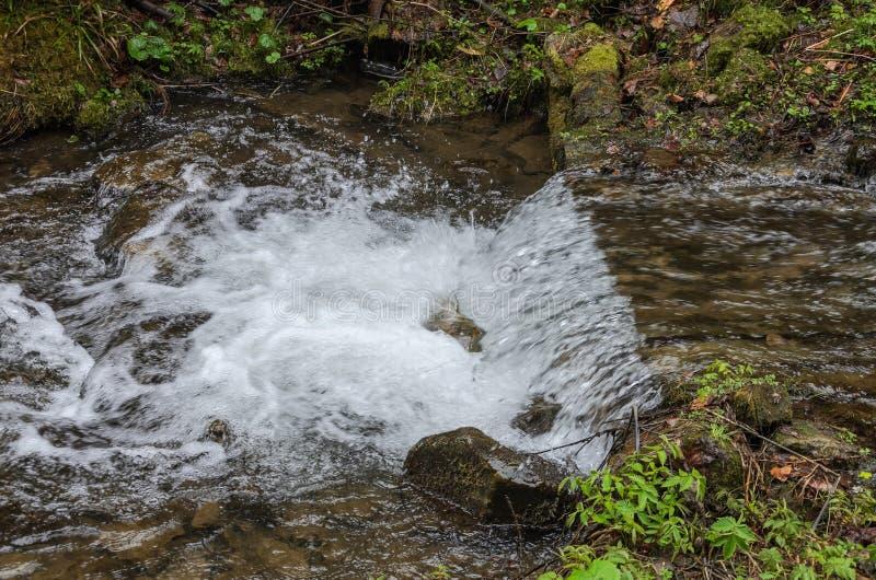 Каскады чистого реки горы среди камней стоковое фото