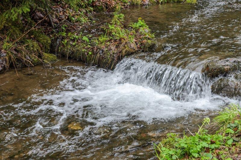 Каскады чистого реки горы среди камней стоковое фото rf