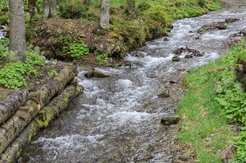 Каскады чистого реки горы среди камней стоковые фото