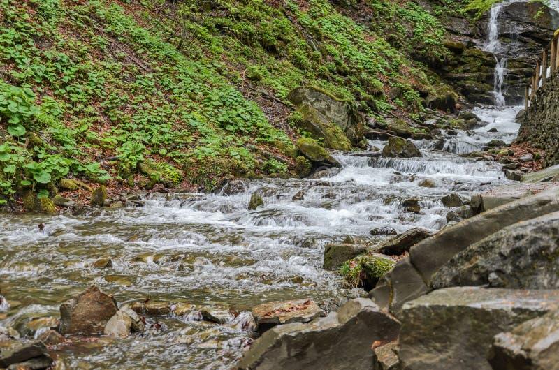 Каскады чистого реки горы среди камней стоковые изображения