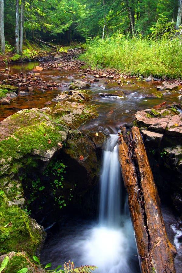 Каскады Gorge реки соединения стоковое изображение rf