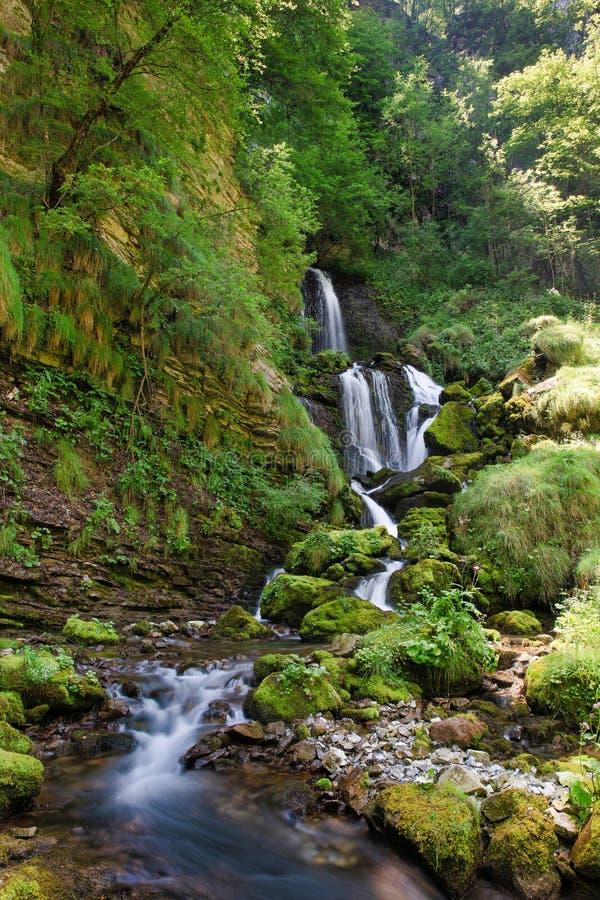 Каскад весен реки Энны Taleggio Val стоковая фотография rf