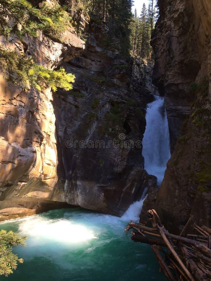 Каскад воды в сценарном каньоне Johnston, национальном парке Banff стоковая фотография rf