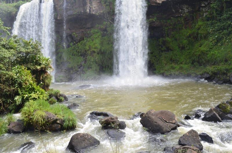 каскад ландшафта леса потока реки природы воды водопада стоковое фото