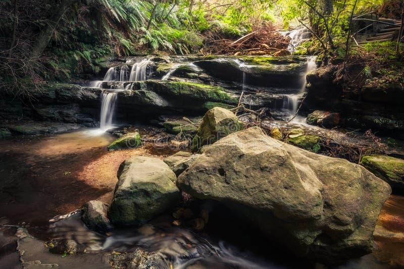 Каскад шагать - Leura, голубые горы, Австралия стоковые изображения rf