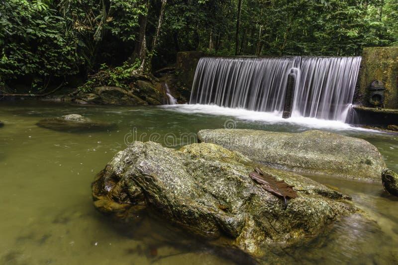 Каскады водопада стоковые изображения rf