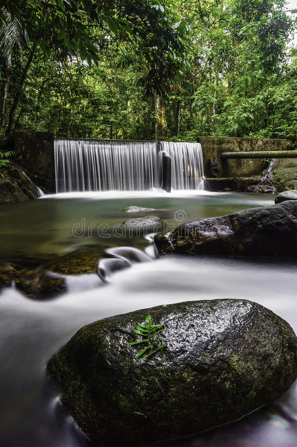 Каскады водопада стоковое изображение rf