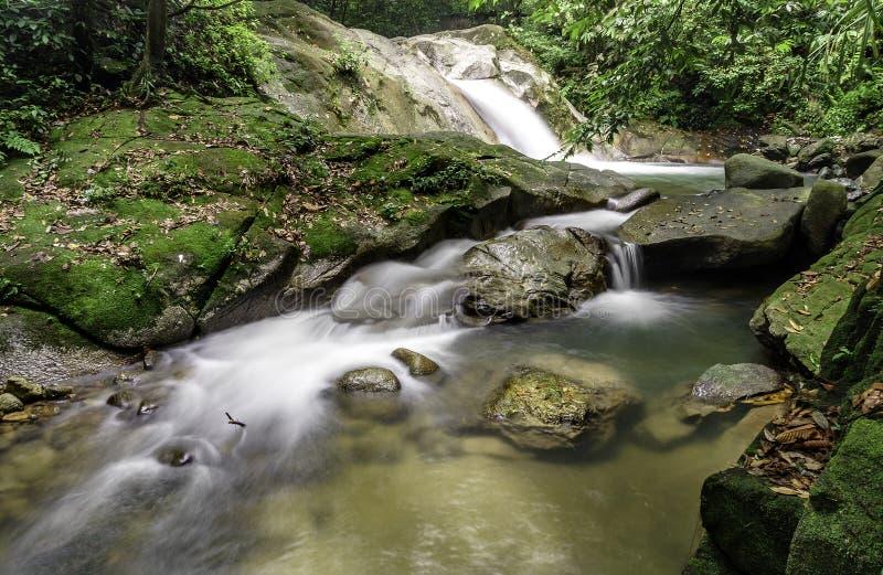 Каскады водопада стоковые фотографии rf