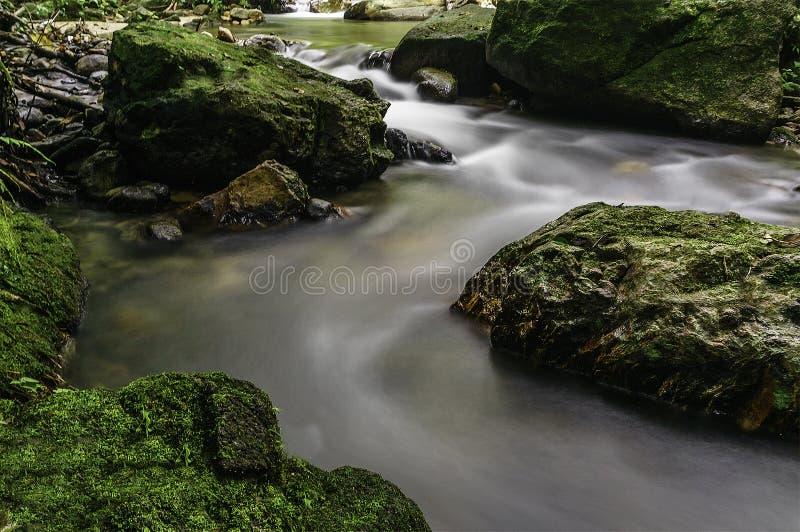 Каскады водопада стоковое фото
