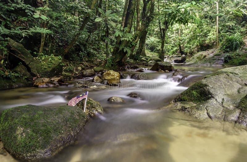 Каскады водопада стоковая фотография rf