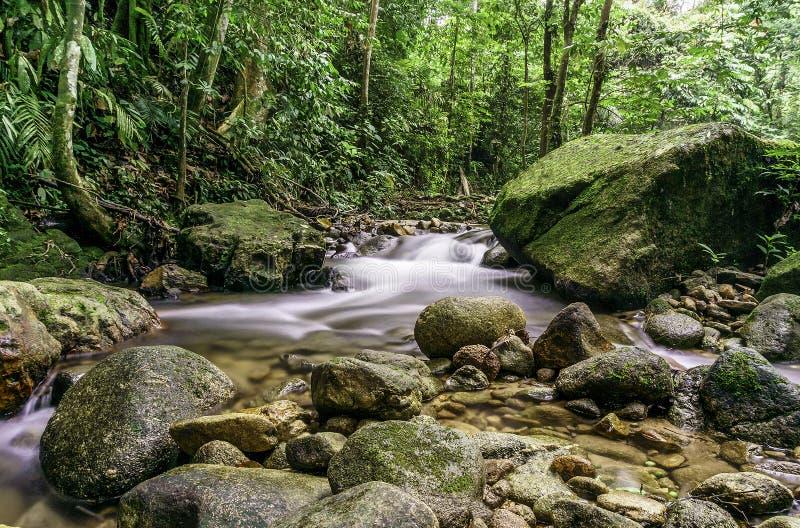 Каскады водопада стоковая фотография